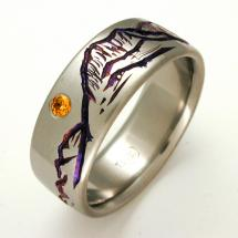 Titanium Wedding Ring by Exotica Jewelry
